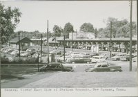 General View Of East Side Of Station Grounds, New Canaan