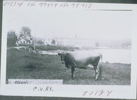 Eagleville Mill And Railroad Station, Eagleville