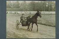 John A. Pilgard driving Hartford Louise, Sage Park, Windsor
