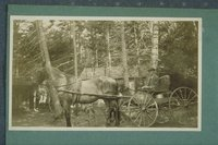 Man in horse-drawn carriage, Poquannuc (Windsor)