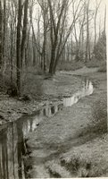 Gully Brook, Keney Park, Hartford, April 1936
