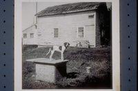 Barn behind Langworthy/Allyn House, Mystic