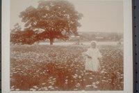 Ada Newbury in daisy field