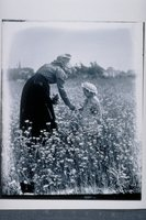 Annie and Ada Newbury in daisy field