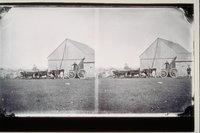 Barn, wagon and oxen