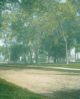 Fairfield Town Green