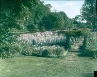 Garden at Sunnieholme