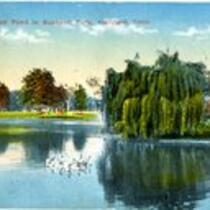 Duck pond, Bushnell Park, Hartford, Conn.
