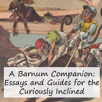 Essays and Guides for the Curiously Inclined
