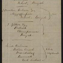 Document: Note written by P.T. Barnum regarding elephants, February 20, 1882